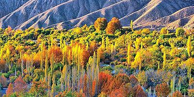 سیرچ کوهستانی در همسایگی کویر