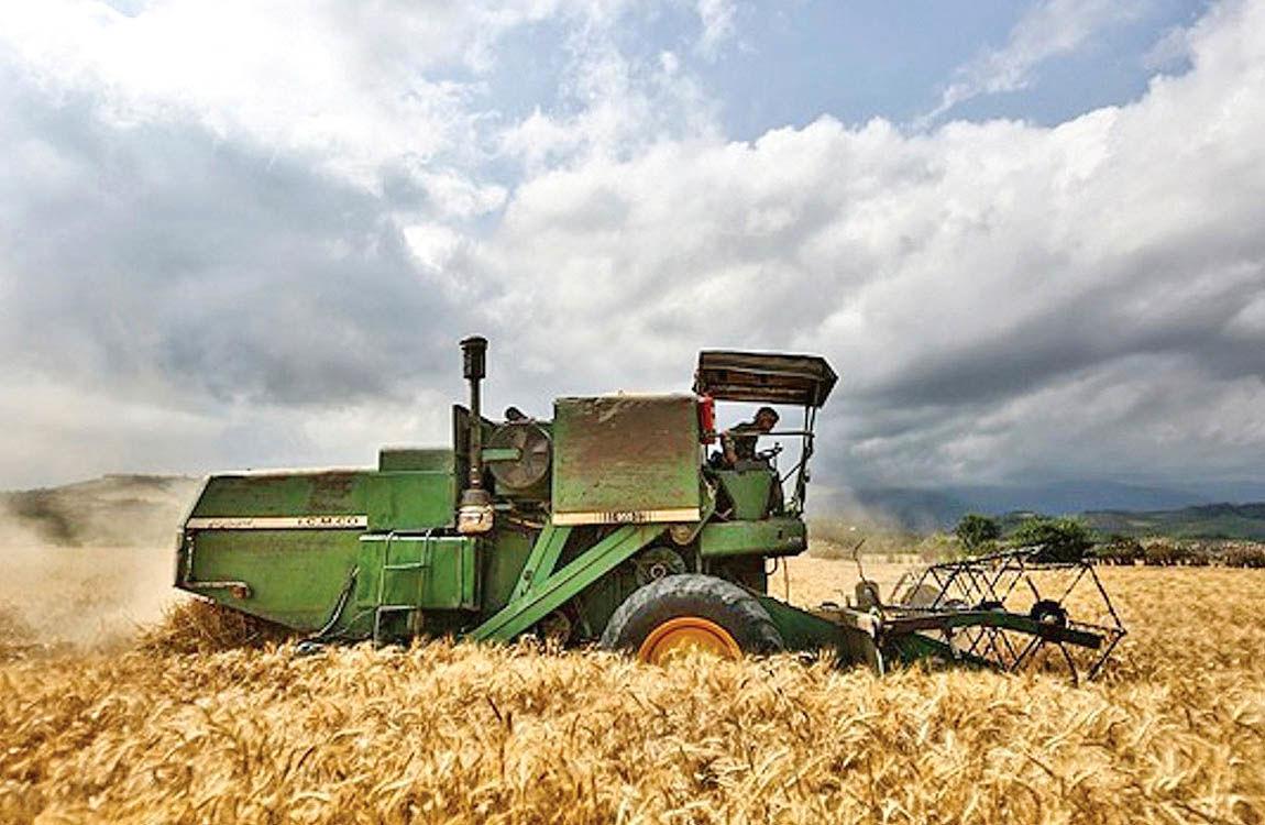 چالش قیمتی در آغاز سال زراعی