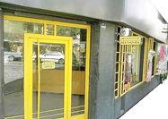 افتتاح خانه موزه بتهوون در تهران
