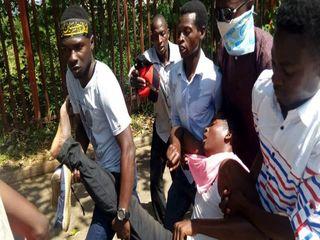 حمله مجدد ارتش نیجریه به راهپیمایی اربعین