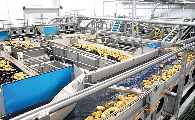 کارنامه صنعت غذا در پنج برنامه