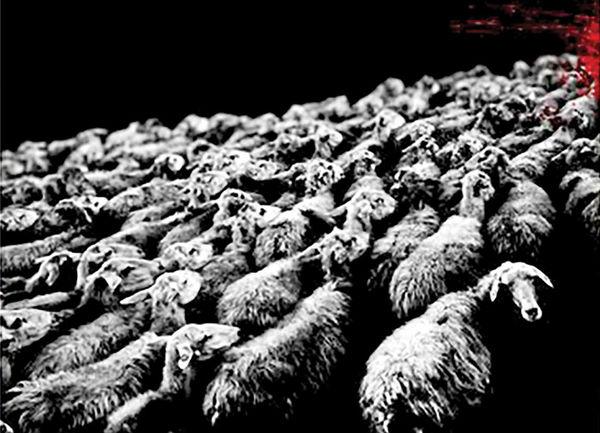 نمایش «گوسفندان!» در تماشاخانه شانو