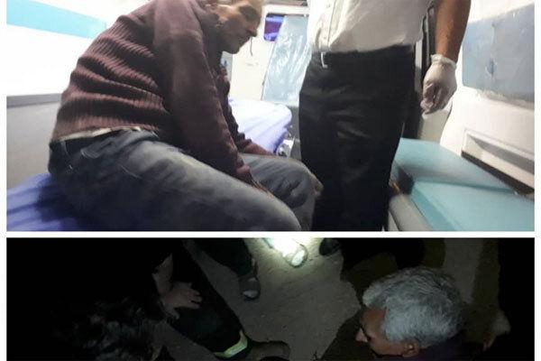 حمله سگ های وحشی به یک پیرمرد در بهارستان