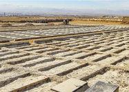 پایان ظرفیت آرامستان تهران تا 5 سال آتی