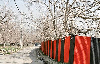 تخریب حیاط خلوت شهرداران مناطق