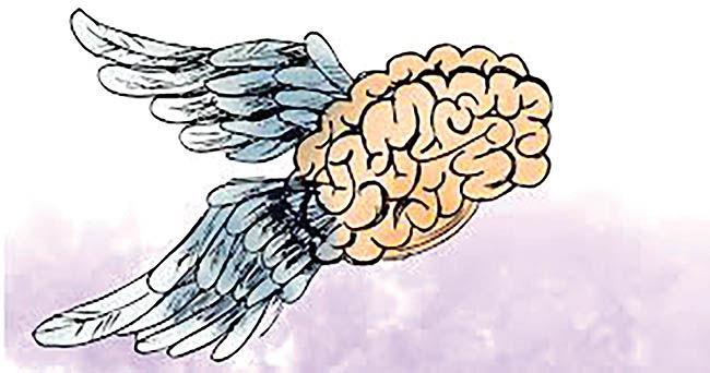 عیارسنجی فرار مغزها
