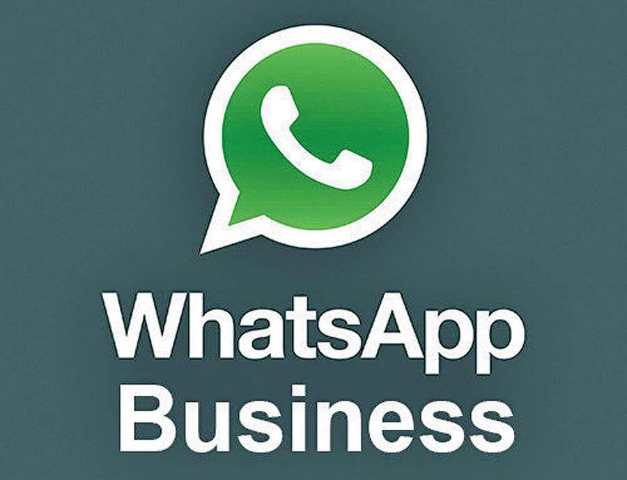 واتساپ تجاری برای استارتآپها