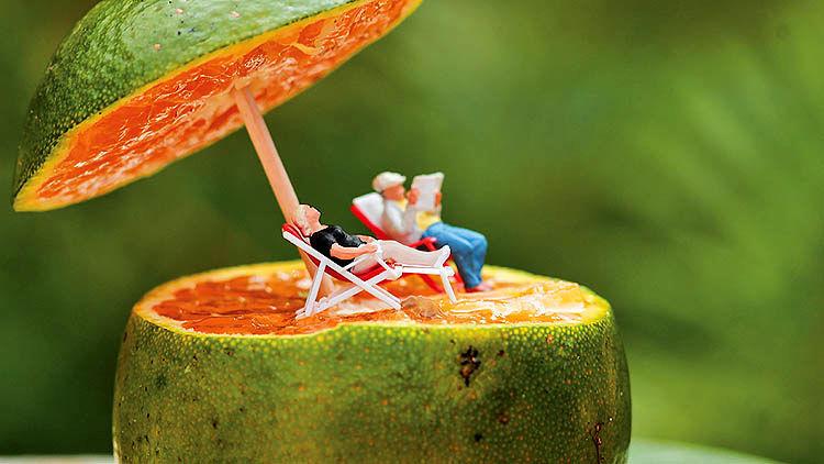 از صندلی مدیریت تا باغ میوه