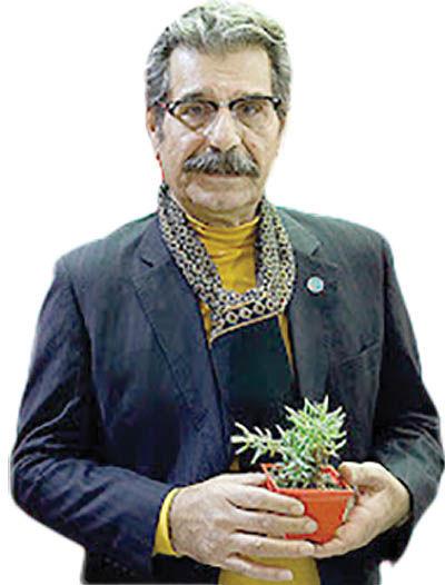 مفهوم خانوادههای معمول ایرانی