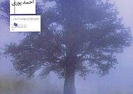 انتشار رمان جدید احمد پوری با موضوع سرطان