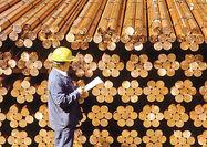 بازگشت کامودیتیها با نفت و دلار؟