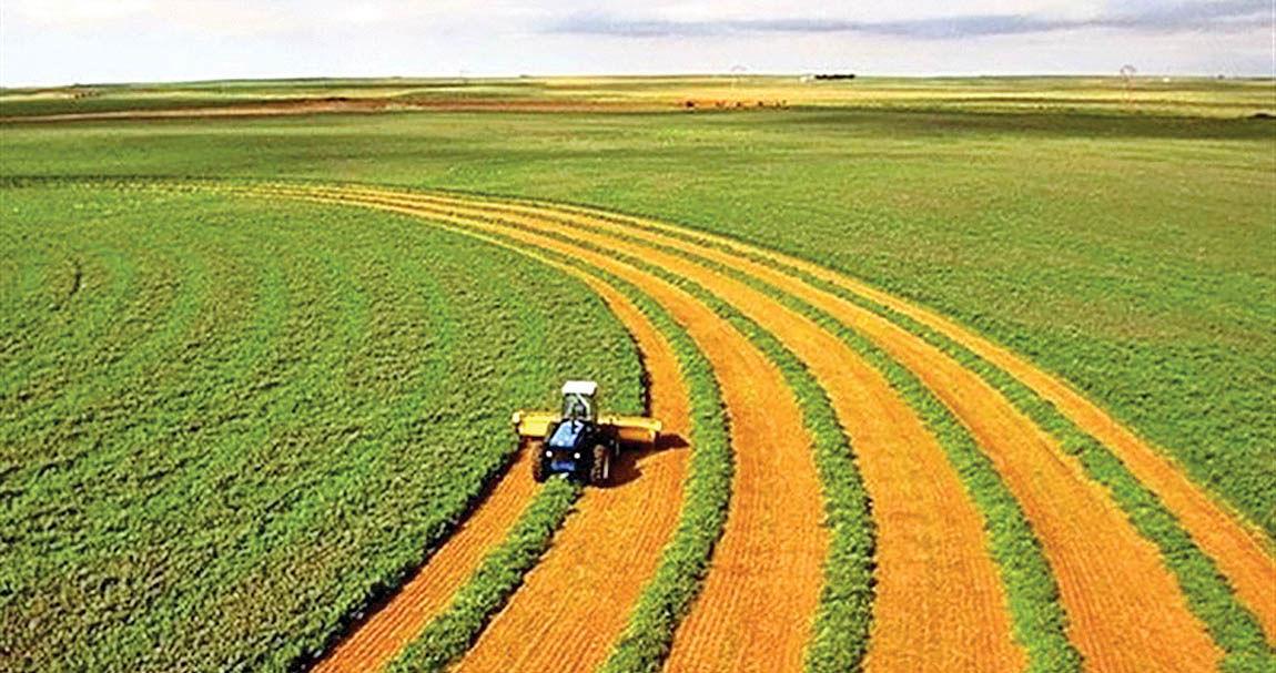 12پیشنهاد برای بهرهوری کشاورزی