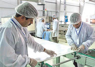 ۲۰۷ میلیارد تومان سرمایهگذاری جدید در صنعت گلستان انجام شد