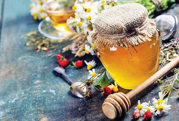 استارتآپ توزیع تخصصی عسل